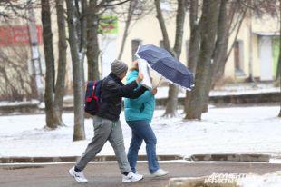 Снежный покров в Смоленской области за двое суток достиг 6 сантиметров
