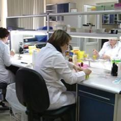 Увеличивается число смолян, не восприимчивых к антибиотикам