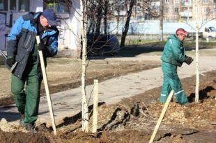 В Смоленске реконструируют сквер на улице Ломоносова