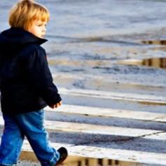 В Смоленской области пропала 4-летняя девочка