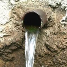 Чистая вода только в семи смоленских родниках