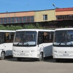 На улицах Смоленска появятся автобусы для маломобильных смолян