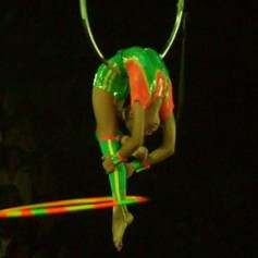 Цирковая артистка во время представления упала с высоты на арену