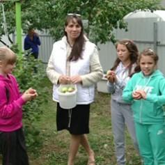 Гостевые семьи становятся непопулярными в Смоленской области