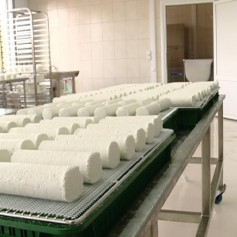 В Смоленской области запустили цех по производству козьего сыра