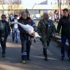 В Смоленском районе из замерзающего озера спасли лебедя.