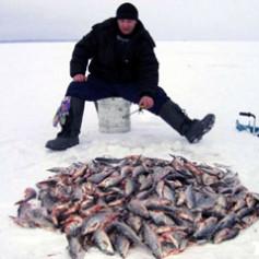 В Смоленской области прошел чемпионат по подледному рыбному лову