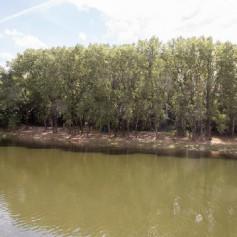 В Смоленске утвердили проект парка «Соловьиная роща»