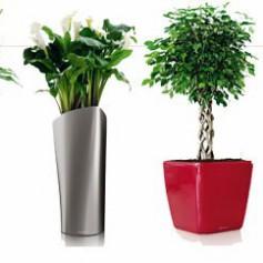 Как из подручных материалов сделать цветочный уличный кашпо (горшок / вазу)?