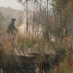 В Смоленске установлен особый противопожарный режим