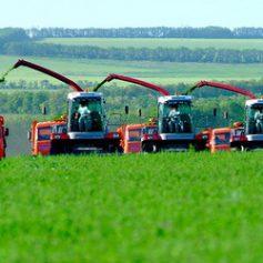Сельское хозяйство Смоленской области получит 24 миллиона рублей на развитие