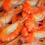 В Смоленске «забраковали» 40 тонн креветок с мышьяком