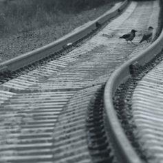 В Смоленске будут закрыты неиспользуемые железнодорожные направления