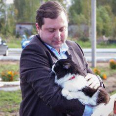 Губернатор призвал смолян обратить внимание на проблему бездомных животных