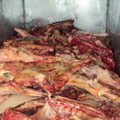 В Смоленскую область не пустили 20 тонн белорусского мяса