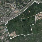 На территории лесопитомника построят многоэтажки