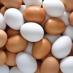 В Смоленскую область не пустили куриные яйца из Республики Беларусь