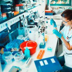Смоленские школьники займутся научными экспериментами
