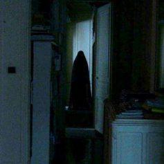В Интернет попало видео о страшной смоленской квартире
