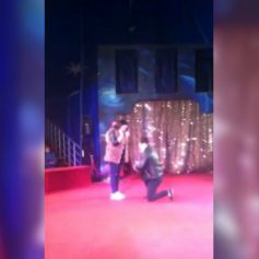 Житель Смоленска сделал предложение своей девушке на арене цирка