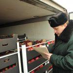 В Смоленскую область везли турецкие помидоры, «замаскированные» под повидло