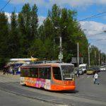 В Смоленской области сняли карантин по инфекции плодовых деревьев