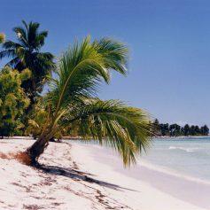 Туры в Доминикану в 2018 году