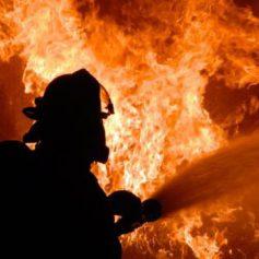 Женщина заживо сгорела на пожаре в деревне Малое Токарево