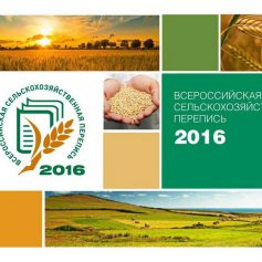В Смоленской области озвучили предварительные итоги Всероссийской сельскохозяйственной переписи