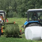 «Смоленское Поозерье» начало заготовку сена для зубров