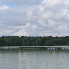 В Смоленском Поозерье появились садки для передержки форели