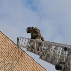 Смоленские спасатели провели «высотную» тренировку