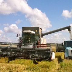 Аграрии Смоленщины приступили к уборке зерновых и зернобобовых культур