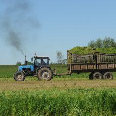 Смоленских аграриев приглашают на Всероссийский Молочный форум