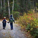 Двое детей пропали в лесу в Смоленской области