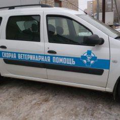 «Скорая помощь» для животных появилась в Смоленске