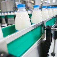 Развитие собственной молочной переработки – приоритет администрации региона