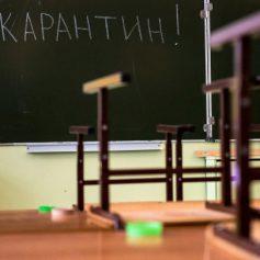 В 22 смоленских школах объявлен карантин