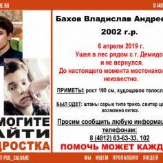 11 пропавших человек разыскивают в Смоленской области
