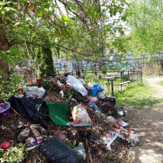 Под Смоленском устроили свалку на кладбище