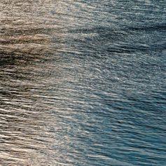 В СКР выясняют обстоятельства гибели подростка в озере в Смоленске