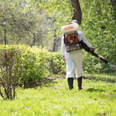 Смоленские парки защищают от клещей