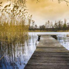 В реке Угра погиб человек