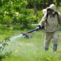 В Реадовском парке уничтожат клещей