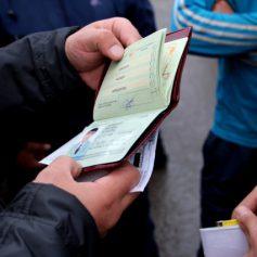Пытались пробраться через границу. Смоленские пограничники задержали нелегалов