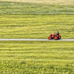 В Смоленском районе трактор съехал в кювет и опрокинулся