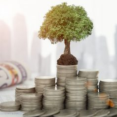 Отзыв о Карат Инвест от успешного инвестора