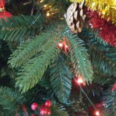 Новогоднюю ёлку из машин выстроили в Вязьме