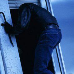 В Смоленской области полицейские поймали серийного дачного вора