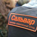 Добровольцы «Сальвара» ищут пропавшую пенсионерку из Сафонова